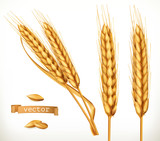 Ears of wheat. 3d vector icon set - 193964172