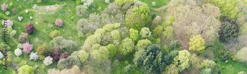 Aerial view of a parc in Paris - 193974774