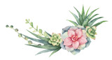 Watercolor vector wreath of cacti and succulent plants isolated on white background. - 193980704