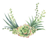 Watercolor vector wreath of cacti and succulent plants isolated on white background. - 193980721