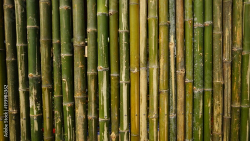 Fototapeta bamboo wall background texture pattern brown nature garden house wallpaper line