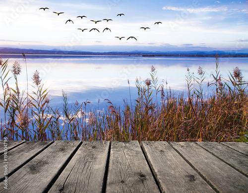 In de dag Zen paisaje azul del amanecer en un lago