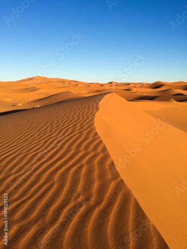 Aluminium Oranje eclat Sahara dunes in Merzouga, Africa - The grand Dune of Merzouga