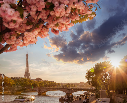 Paris with Eiffel Tower against spring tree in France