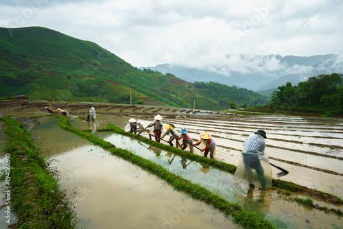 Aluminium Rijstvelden Terraced rice field in water season, with farmers working on the field in Y Ty, Lao Cai province, Vietnam