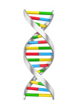 Dna Molecule Illustration Wall Sticker