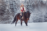 Horse. Girl rider rides brown horse through winter forest in snow. Concept preparation for competitions. - 194130517