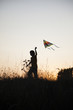 boy playing kite on summer sunset meadow silhouetted
