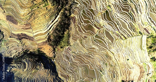 Deurstickers Rijstvelden World's most beautiful places. Aerial view on water filled rice fields during spring, the Yuanyang Hani Rice Terraces in southeastern Yunnan province, China.