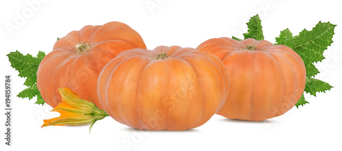 Fotobehang Verse groenten Fresh pumpkin with leafs isolated on white background