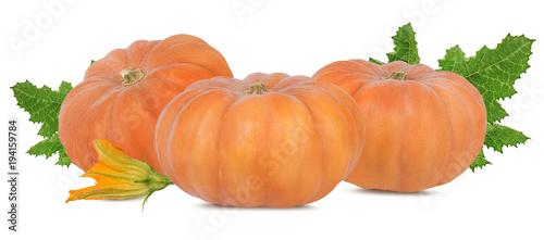 In de dag Verse groenten Fresh pumpkin with leafs isolated on white background
