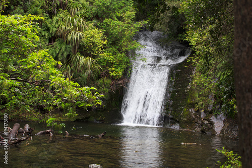 Aluminium Betoverde Bos Beautiful Waterfall in New Zealand in Lush Rainforest