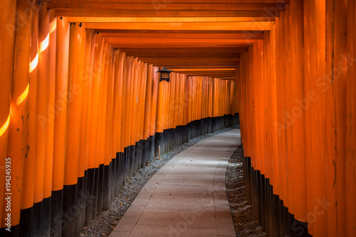 Foto op Plexiglas Kyoto Red Torii of Fushimi Inari Shrine, Kyoto, Japan