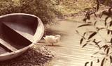 гусь в деревне около озера гуляет  - 194261571