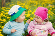 Little boy and girl in hats sitting on the field with soft toys in summer - 194264906