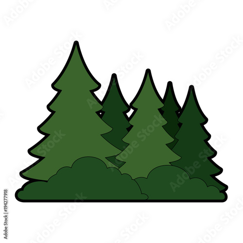 Deurstickers Wit pine forest scene icon vector illustration design