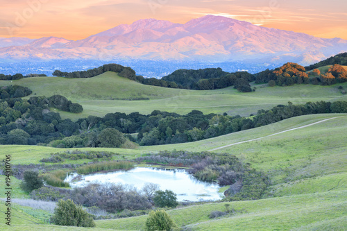 Foto op Canvas Olijf Mount Diablo Sunset as seen from Briones Regional Park. Contra Costa County, California, USA.
