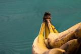reife Bananenstaude