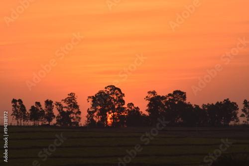 In de dag Oranje eclat sunset