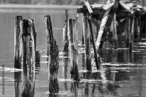 Drewniane poczta łamana molo pozycja na wodzie. Wciąż życie, tło, tekstury pojęcie. Czarno-biała fotografia