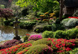 Topiary  . Beauty nature in Japanese park in France in Maulivrier . Pays de la loire .