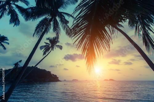 Fotobehang Tropical strand Tropical sea beach during sunset, with silhouettes of palm leaves.