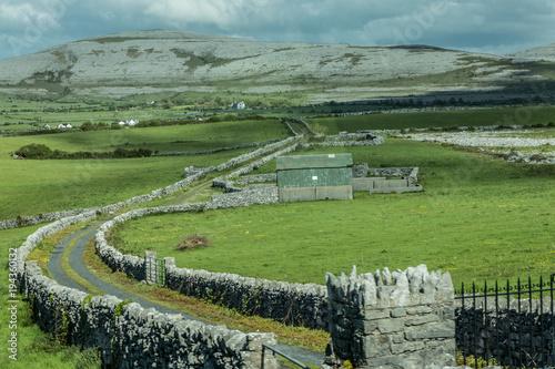 Fotobehang Pistache Atlantic Ireland