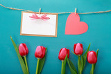Fototapeta Valentine's day theme with tulips and greeting card