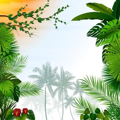 Tropical landscape with palm trees and leaves