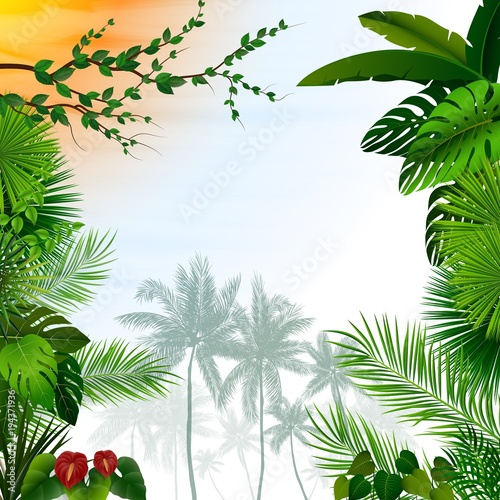 Fototapeta Tropical landscape with palm trees and leaves
