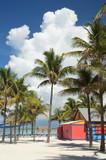 Beach Day - 194374383