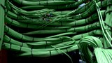 Server, cables. Сomputers, data center. many cables, bottom view, moving camera - 194383527