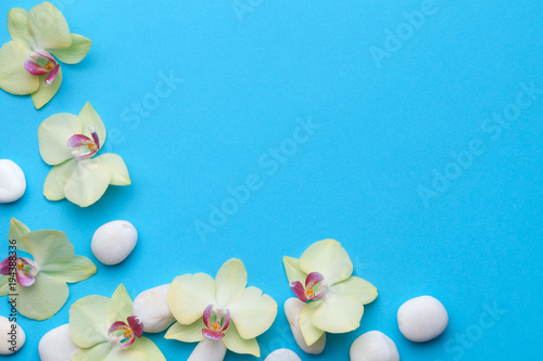 Foto op Canvas Spa Orchid Flowers with Spa Stones on Blue Background