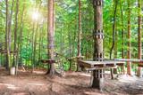 costruzioni di legno nel bosco per percorso sugli alberi