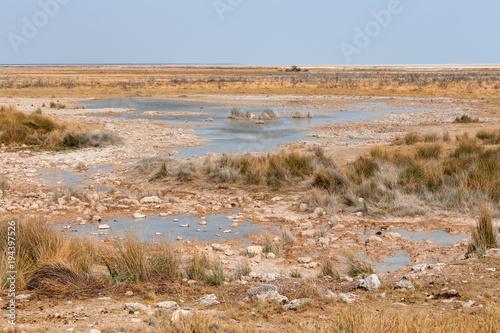 Foto op Canvas Blauwe hemel landscape namibia Etosha game reserve