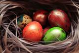 Easter Egg - 194410326