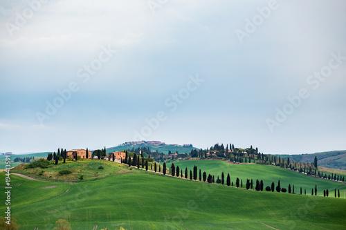 Fotobehang Blauwe hemel Typical Tuscan landscape