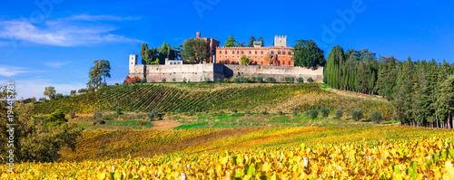 Plexiglas Freesurf Castles and vineyards of Tuscany, Chianty wine region