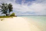 landscape from a beautiful  atoll in  raja ampat archipelago - 194424755