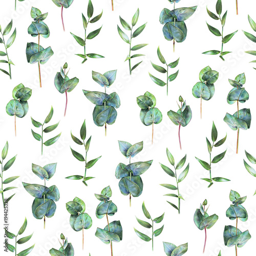 Seamless floral pattern with green eucalyptus and leaves of ruscus on white. Spring flowers. Botanical natural background drawn by hand with colored pencil © arvitalya