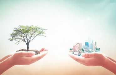 Sustainable development concept: Two human hands holding big tree and city over blurred nature background