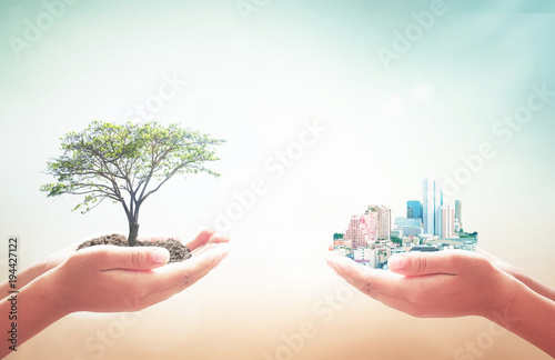 Sustainable development concept: Two human hands holding big tree and city over blurred nature background - 194427122