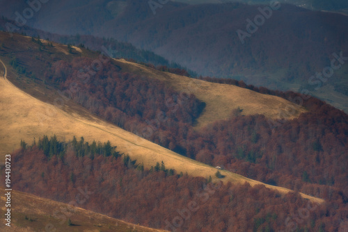 Fotobehang Nachtblauw Meadows of the hill, on the slopes of the autumn forest