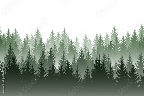 Aluminium Olijf Vector misty green forest isolated on white background