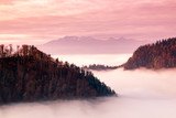 Fantastic mountain landscape, surreal pink and purple sky, the mountains are covered with trees, at the bottom of the valley filled with fog