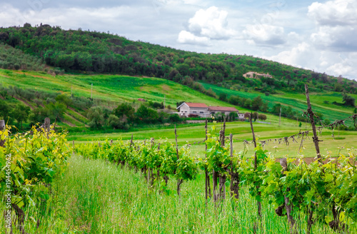 Fotobehang Toscane rural house on the hill among vineyards, Tuscany, Italy