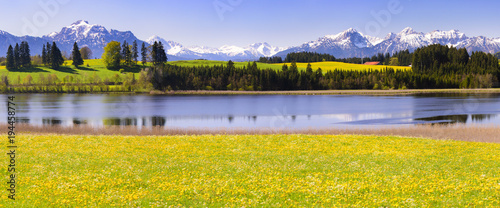 Aluminium Lente panoramic scene with lake Forggensee and alps mountains in region Allgäu, Bavaria, at spring