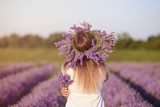 Young, beautiful girl in lavender field - 194460914