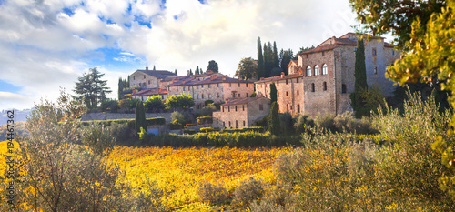 Foto op Aluminium Toscane Traditional rural landscapes of Tuscany. Chianty vine region. Italy