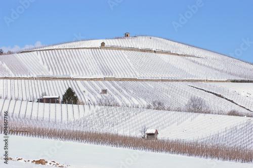 Fotobehang Wijngaard Weinberge am Staufenberg in Heilbronn mit Schnee